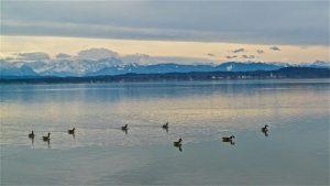 Starnberger See mit Blick auf Alpen