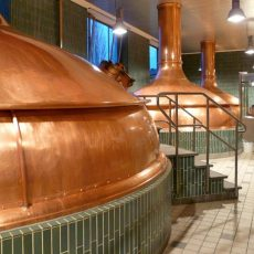 Brauereibesichtigung bei Paulaner